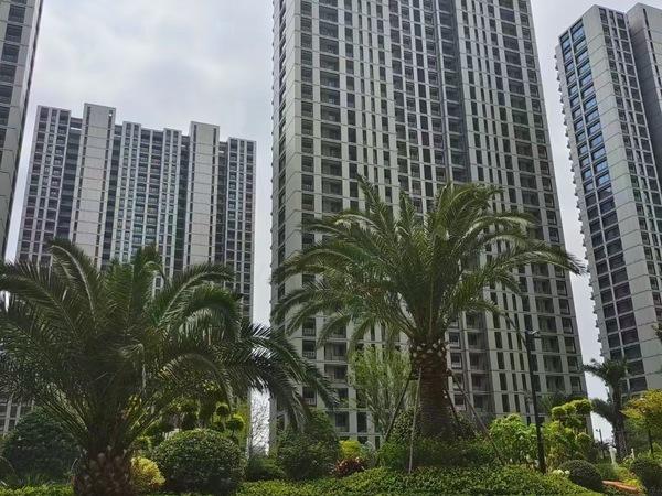 滨江金色家园117平前排位置视野无遮挡210W小区绿化好近正大城广场