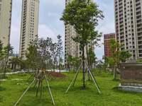 南都豪园特价房160平急售200万、就读城南一小一中,近中心公园南虹广场。