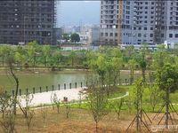 出售香江丽苑电梯商品房158平方证过二年,南北通透,带阳台学区房