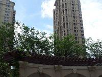 铂金湾 高层跃层 7小 高档小区 紧邻江南里 新区唯一购物综合体