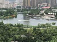 出售:绿城玫瑰园176平 高层边套 豪华精装修 地理位置优越 售价488万