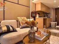 精优出售蝴蝶广场高层公寓3室LOFT两层