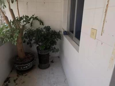 出售 清远路 中心小区 八小 清爽装修 有阳台