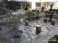 出售:南大街 中心地段 送超大花园50平送车库 租8千 年 证满2年