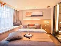 蝴蝶广场LOFT精装公寓和商铺 买一层送一层复式得房率高 市政府 南虹