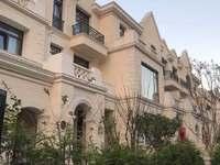海德新湖公园联排别墅 380平急售1000万证满两年送地下室花园