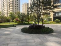 绿城玫瑰园142平,单价2万,楼层美丽价格心动,可按揭