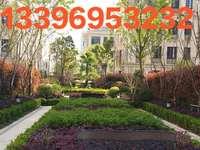 维多利亚花园132平200万精装修性价比超高13396953232