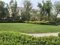 海德公园 89平赠送面积多 绿城物业 看清河公园,就读新七小