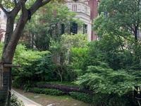 悦荣府联排别墅三层248平边套一楼中空尽显奢华送两层地下室带三面大花园
