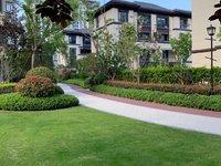 乐清府联排叠墅165平实得约350平仅售420万带地下室花园就读新实验